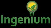 Ingenium Training and Consulting logo