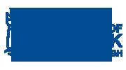 University of Limerick-new-blue logo