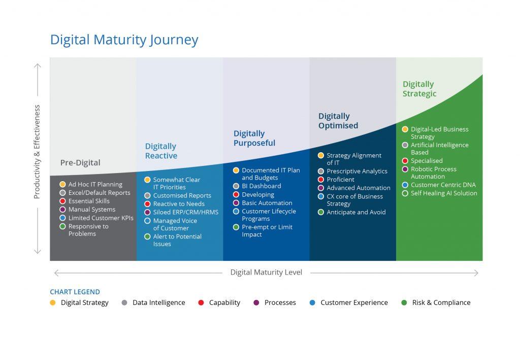 Digital Maturity Graphic